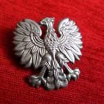 polish police pin